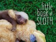 book_of_sloth