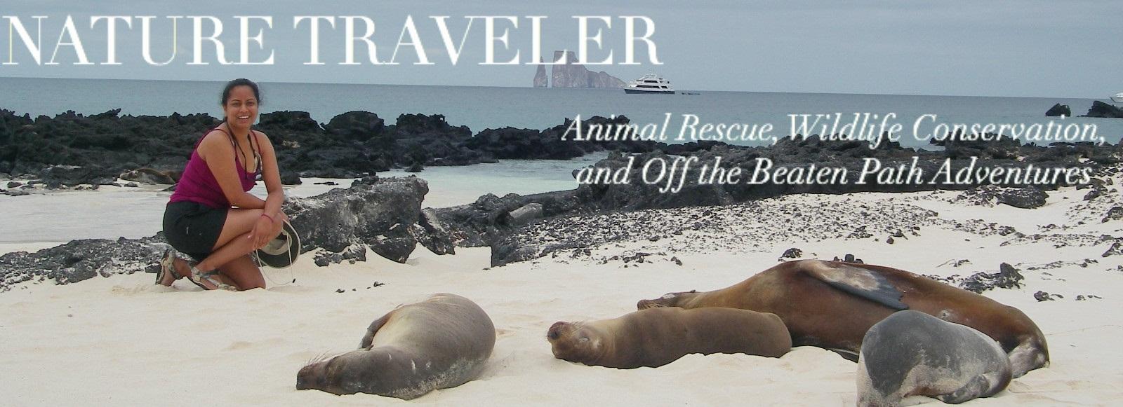 Nature Traveler