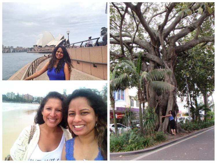 b- Sydney collage
