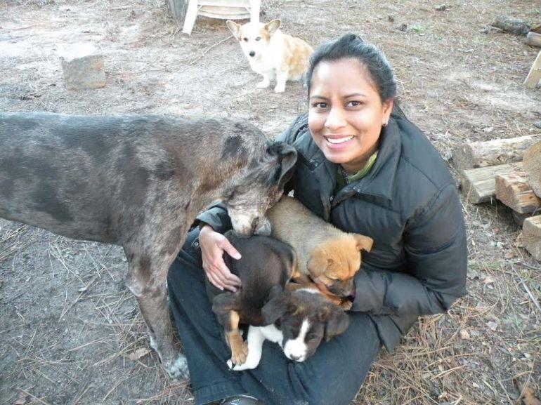 Proud Spirit Rescued Pups