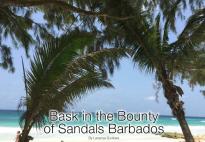 Barbados 25A mag article