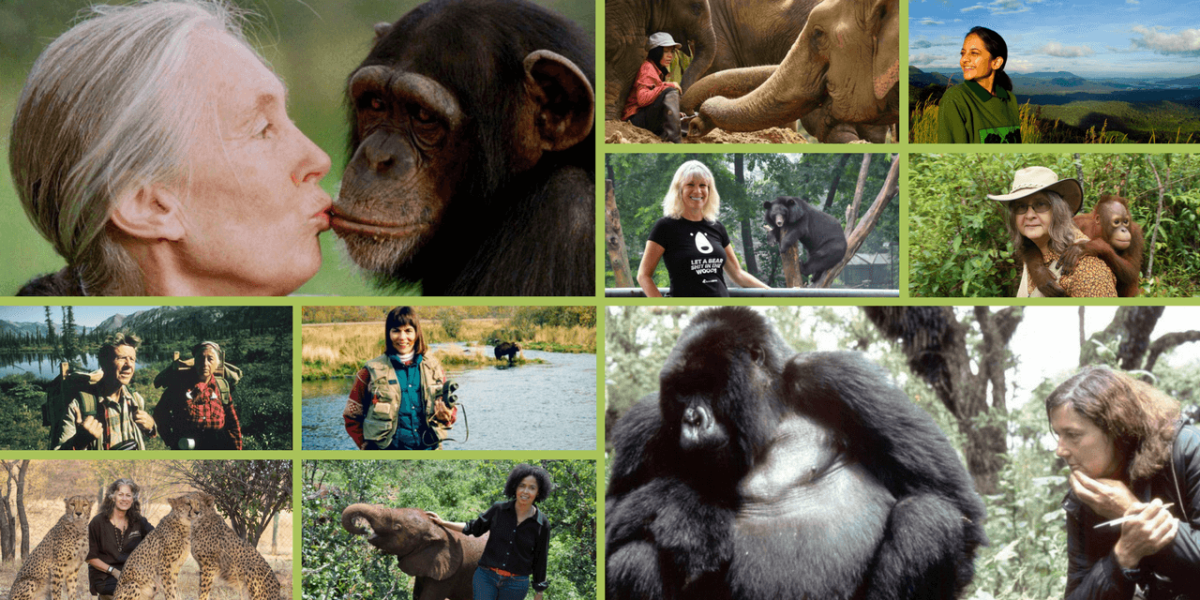 15 Inspirational Animal Rights Activists Who Happen to be Women (Green Global Travel)